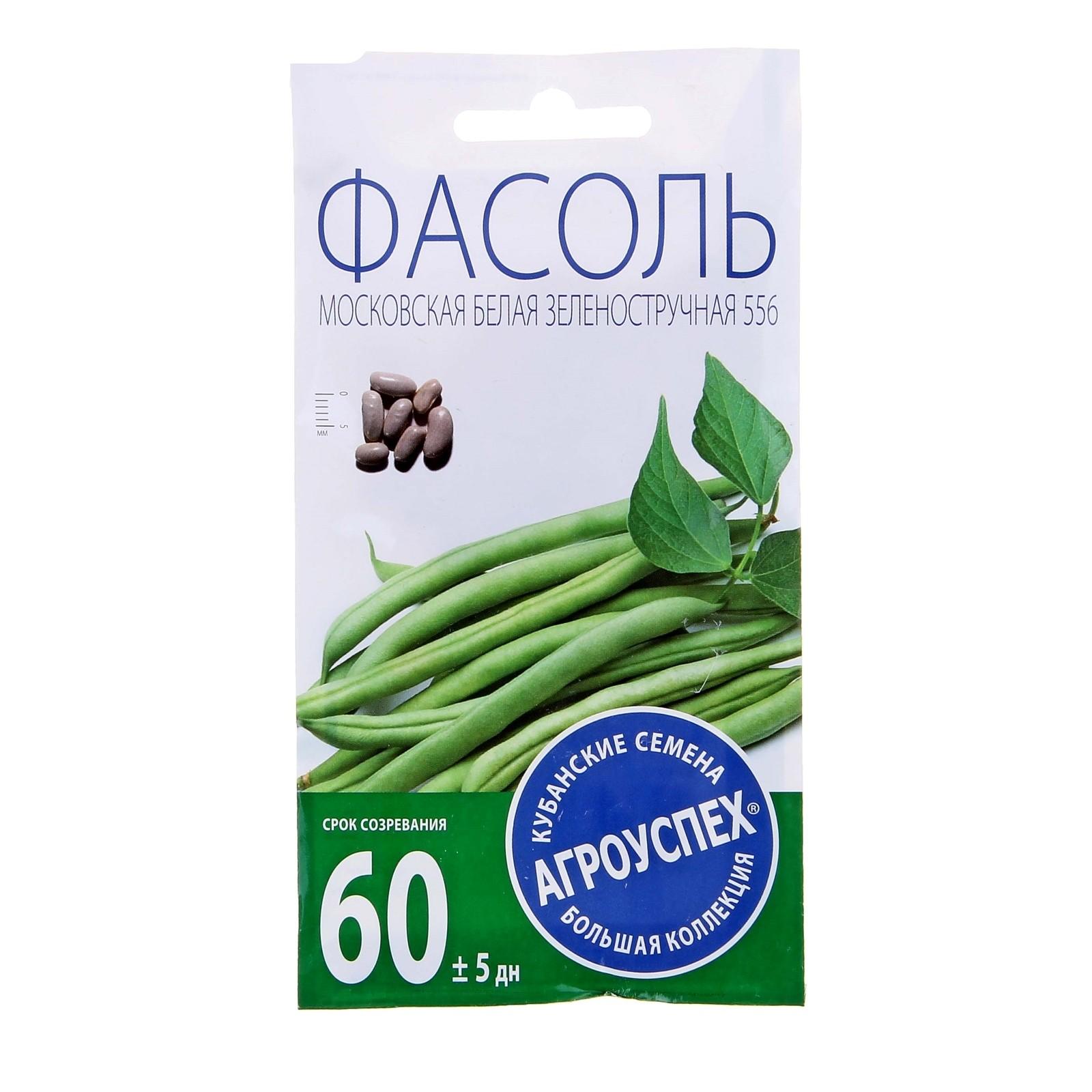 фасоль московская белая видео