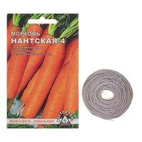 Морковь нантская 4  семена на ленте
